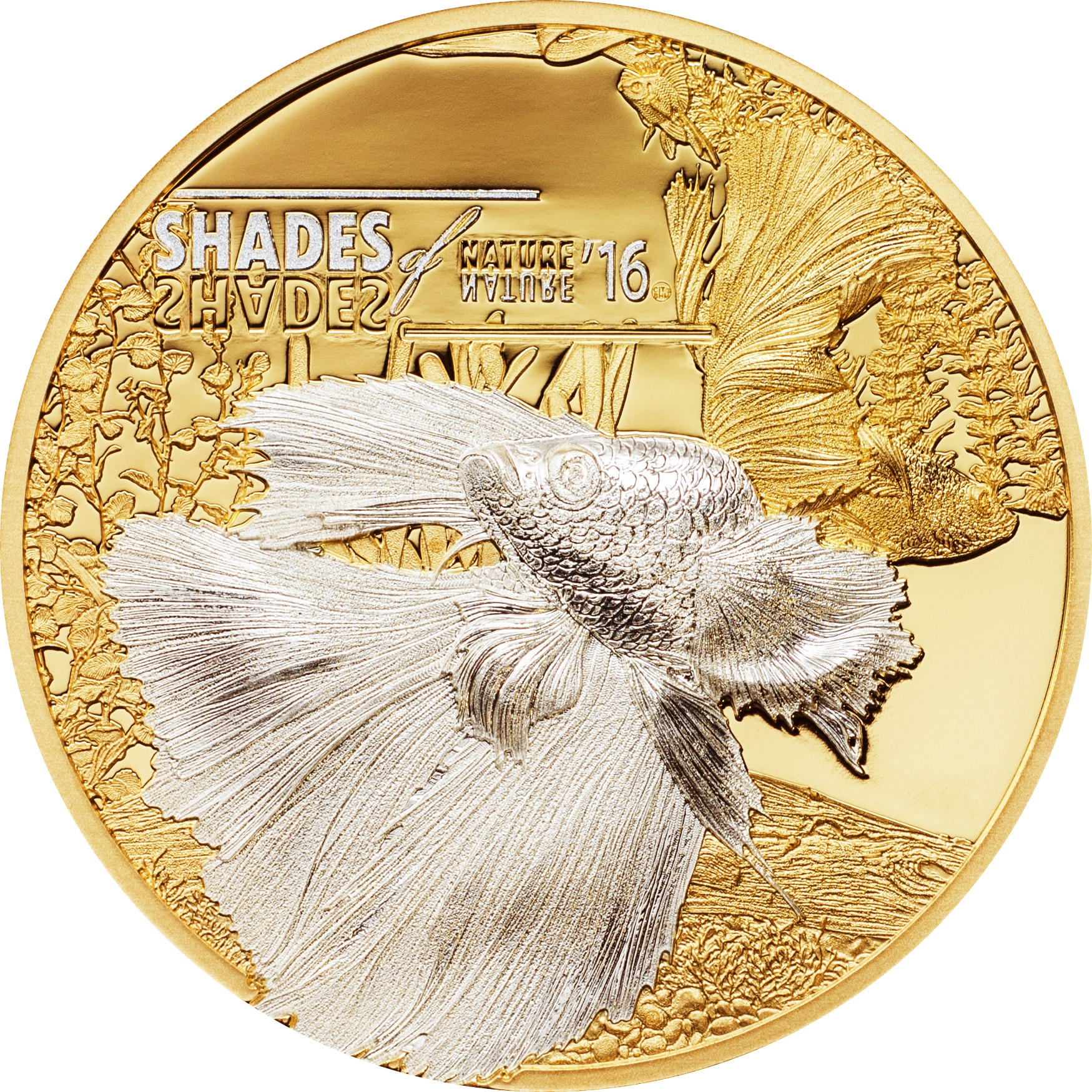 Картинки по запросу Новая монета серии «Оттенки природы» «Бойцовая рыбка»